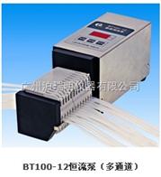 BT100-12恒流泵(多通道),上海滬西BT100-12蠕動泵
