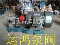 不锈钢齿轮泵用途