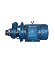 1W2.4-10.5型漩涡泵