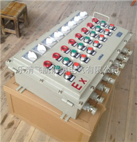 BXMD防爆照明(动力)配电箱,BXMD防爆配电箱