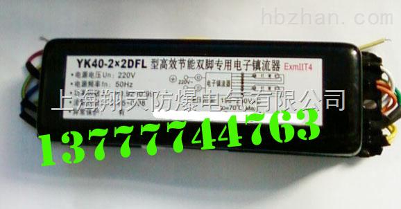 YK40-2×2DFL型高效节能荧光灯防爆电子镇流器