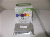 牛泰勒虫抗体(Theileria)酶联免疫试剂盒