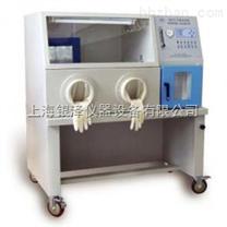厭氧培養箱YQX-I,安全可靠,使用方便