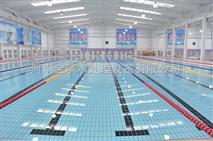 游泳池水處理設備/游泳池水處理系統/泳池水處理技術