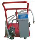 定量电动式加注油机