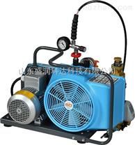消防空气充填泵JII3E-H 德国宝华