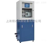 在线氯离子监测仪DWG-8004,氯离子分析仪,离子检测仪