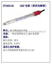 在線ORP計電極探頭PT4805-60-PA-S8/120