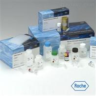 大鼠CD3分子检测试剂盒