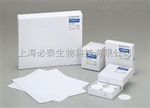 日本Advantec方形石英纤维滤纸 QR-100