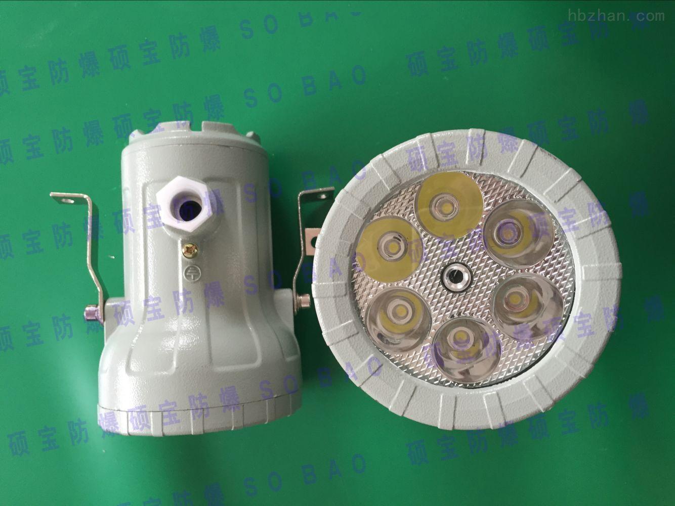 BSD96防爆视孔灯