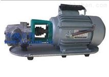 WCB50不锈钢齿轮油泵