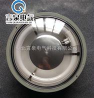 BPY91-H-22W防爆防水防尘环形荧光灯