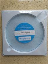 WHATMAN 142mm聚碳酸酯膜1um孔径Nuclepore Track-Etch