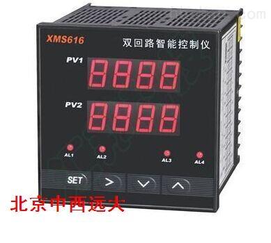 管道压缩空气温湿度检测仪 型号:bjwlht-2s-300