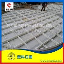 塑料格栅、压栅塔内件生产厂家15807996115