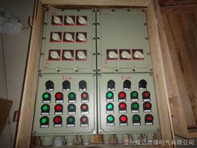 防爆疏照型电源配电箱DIIBT4;IP65