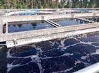 南京---食品廠汙水處理