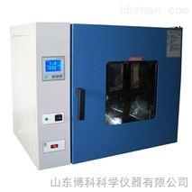 上海一恒電熱鼓風幹燥箱