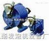 2013 单吸式环形计量泵专家大力推荐