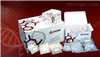 小鼠p53检测试剂盒