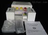 小鼠脂联素检测试剂盒