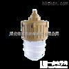 SBD3103-J70W吸壁式免维护节能防爆灯